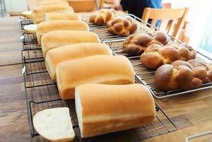 国産小麦の食パンとブリオッシュ